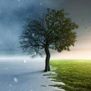 Winterhoch rollt an! Schnee, Sturm und klirrende Kälte drohen (Foto)