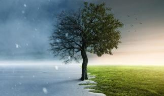 Der aktuelle Wetter-Ausblick für Deutschland. (Foto)