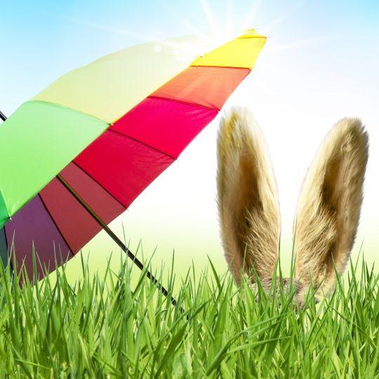 Weiße Ostern oder Sonne satt? DAS verraten die Wettermodelle (Foto)
