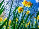 Kommt der Winter an Ostern zurück? (Foto)
