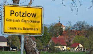 Polizeitaucher suchen im Oberuckersee in Brandenburg nach fünf Leichen (Symbolbild). (Foto)