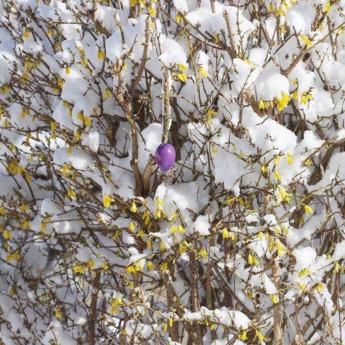 Winter-Horror am Wochenende? Meteorologen warnen vor Luftmassengrenze (Foto)
