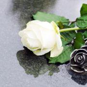 """""""Teen Wolf""""-Star nach Parkinson-Drama gestorben (Foto)"""
