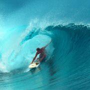 Surfbrett mit Biss-Spuren angespült! Fiel Robert einem Hai zum Opfer? (Foto)