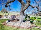 Die Einfahrt zur Neverland Ranch. Dort sammelte Michael Jackson zahlreiche Statuen, ein Teil davon steht nun zum Verkauf. (Foto)