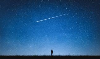 Hobbyastronomen dürfen sich auf das Lyriden-Maximum freuen. (Foto)
