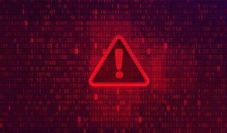 Zwei Wissenschaftler warnen vor den Folgen von Cyber-Attacken. (Foto)