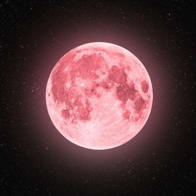 Seltenes Spektakel! Super-Pink-Moon erhellt den Nachthimmel (Foto)