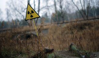 Ein Strahlenwarnzeichen steht in der Sperrzone um das explodierte Atomkraftwerk Tschernobyl. (Foto)