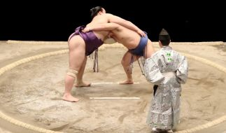 Der Sumoringer Hibikiryu ist verstorben (Foto)