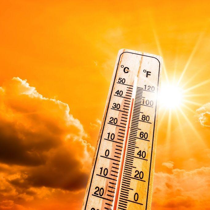 Extreme Hitze! Bei DIESEN Warnstufen herrscht Lebensgefahr (Foto)
