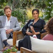 Royals in Lebensgefahr? Wilder Schwarzbär terrorisiert Montecito (Foto)