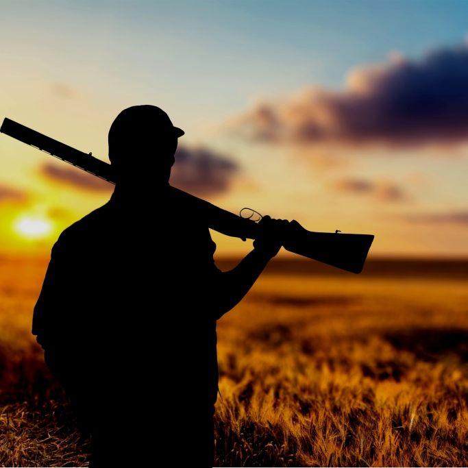Wanderer mit Truthahn verwechselt und angeschossen (Foto)