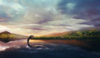 Ein Taucher will ein gigantisches See-Ungeheuer entdeckt haben. (Foto)