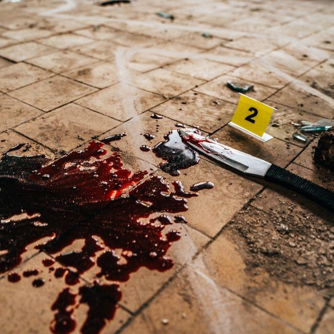 Filmregisseur ermordet und zerstückelt, weil er nicht verheiratet war (Foto)