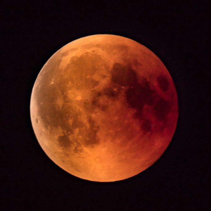 Nach Blutmondfinsternis! Düstere Flower Moon erhellt Nachthimmel (Foto)