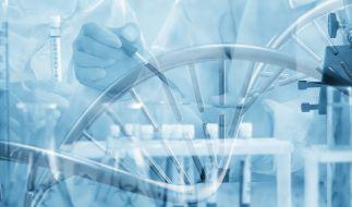 Stammt das Coronavirus aus einem Labor in Wuhan? (Foto)