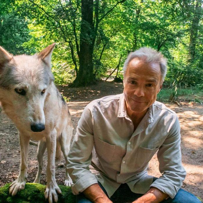 Wiederholung der Tierreihe online und im TV (Foto)