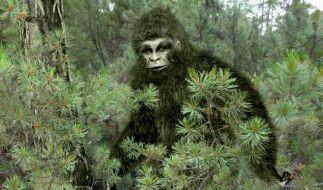 Der Kryptozoologe Andy McGarth ist überzeugt davon, dass Bigfoot in den Wäldern Europas lebt. (Foto)