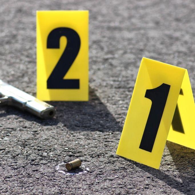 Kugel galt einem Hund - Mutter schießt eigenen Sohn (5) nieder! (Foto)