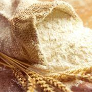 Salmonellen-Verunreinigung! Hersteller ruft Mehl zurück (Foto)