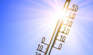 In der nächste Woche soll eine Hitzewelle über Deutschland rollen. (Foto)
