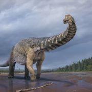 30 Meter lang, 6 Meter hoch! DIESER Urzeit-Gigant lässt Forscher jubeln (Foto)