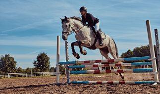 Pferderennstar Laura Lafferty liegt nach einem Horror-Crash mit ihrem im Krankenhaus. (Foto)