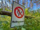 Die Waldbrandgefahr nimmt aktuell in vielen Teilen Deutschland zu. (Foto)