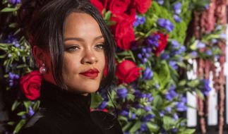 Rihanna lässt ihre Fans schwitzen. (Foto)