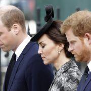 Strikte Trennung! HIER wollen sie Prinz Harry nicht dabei haben (Foto)