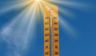 Rollt in der nächsten Woche eine Hitzewelle auf Deutschland zu? (Foto)