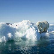 Arktisches Meereis auf Rekordtief! Dramatische Folgen für Europa (Foto)