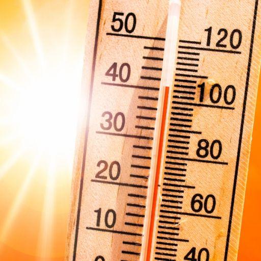 Schock-Studie! Rotes Kreuz warnt vor 7000 Hitze-Toten pro Jahr (Foto)