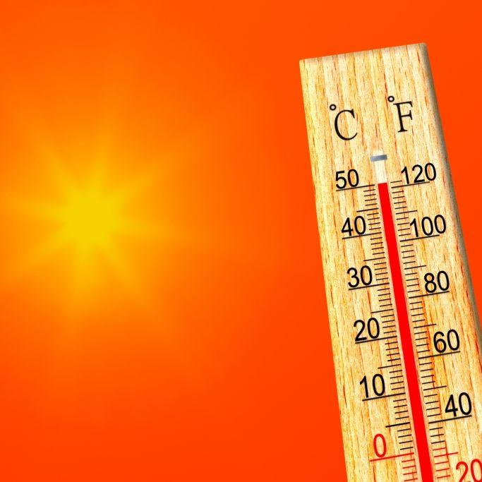 Extreme Waldbrandgefahr bei 50-Grad-Horror! Warnung für DIESE Urlaubsländer (Foto)