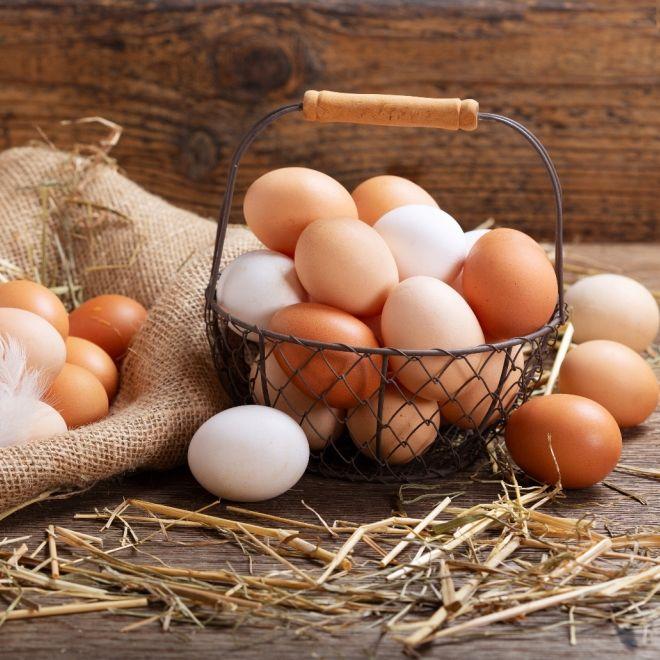 Salmonellen-Vergiftung! Discounter ruft Eier zurück (Foto)