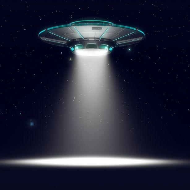 """Frau findet """"UFO"""" im Garten - mit blinzelndem """"Alien"""" (Foto)"""