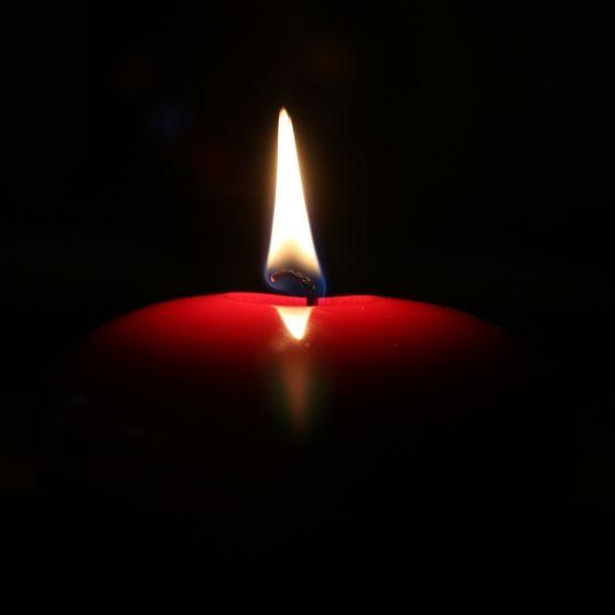 Todesursache unklar! Kinder-Star stirbt im Kreis seiner Familie (Foto)