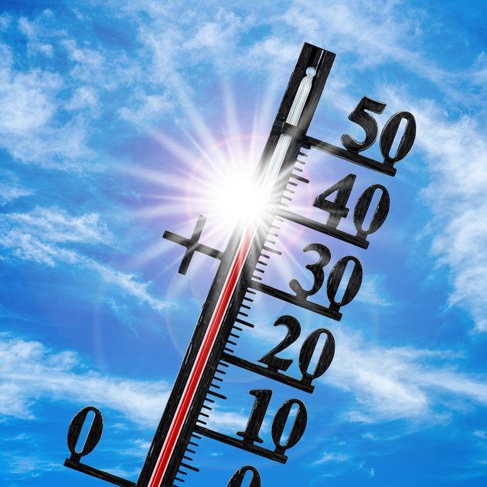 Hoch Elfi knackt 30-Grad-Marke!Saharahitze flutet ab heute Deutschland (Foto)