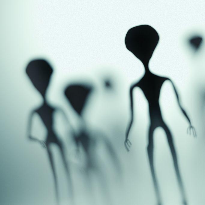 Riesiger Alien am Strand entdeckt! Zeuge postet Beweisvideo (Foto)