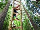 Janine Wissler (Die Linke), klettert auf einer Leiter zu einem Baumhaus im Dannenröder Wald. (Foto)