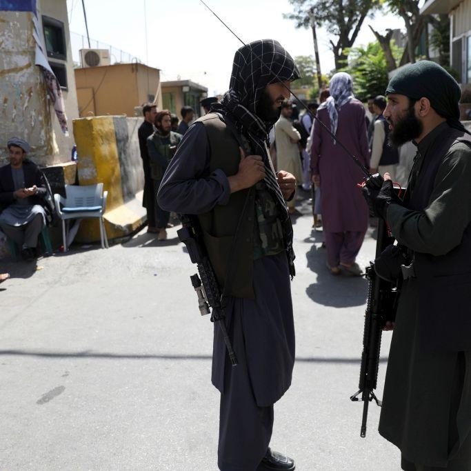 Folter-Opfer berichtet:Taliban verfüttern Feinde an Hunde (Foto)