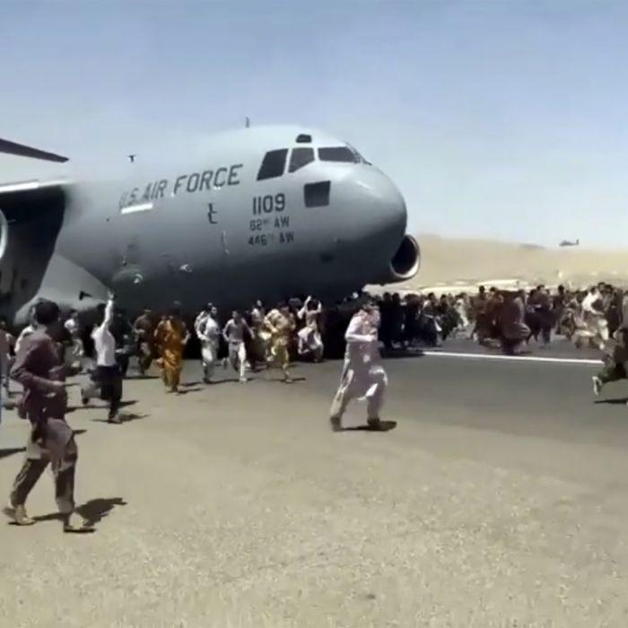 Leichenteile im Flugzeug-Fahrwerk! Untersuchung eingeleitet (Foto)
