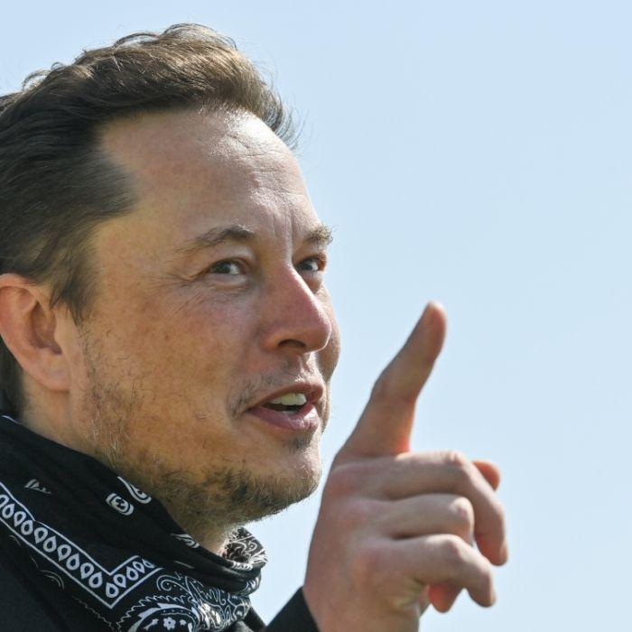 Tesla-Chef prophezeit: Taliban-Machtübernahme läutet Apokalypse ein (Foto)