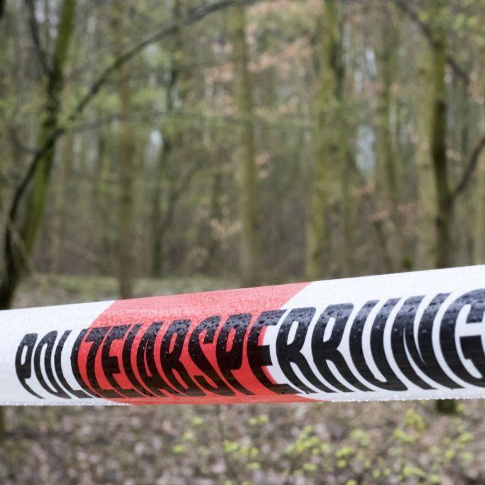 Polizei entdeckt weitere Leichenteile in Gornau (Foto)