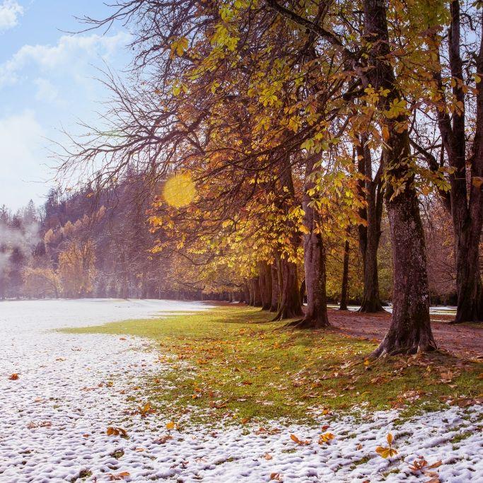 Erster Schnee im September? Das sagen Meteorologen voraus (Foto)