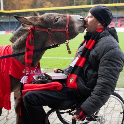 Das Maskottchen Andile der SG Sonnenhof Großaspach bekommt von Stadionsprecher Tai Volkmer eine Möhre gefüttert.