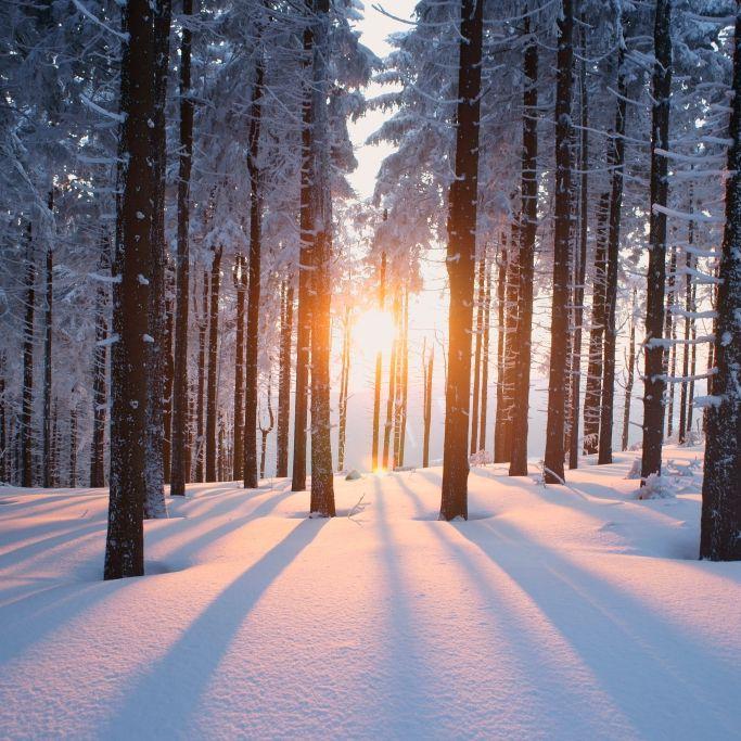 Eiszeit zu Weihnachten? Meteorologen geben Schock-Prognose (Foto)