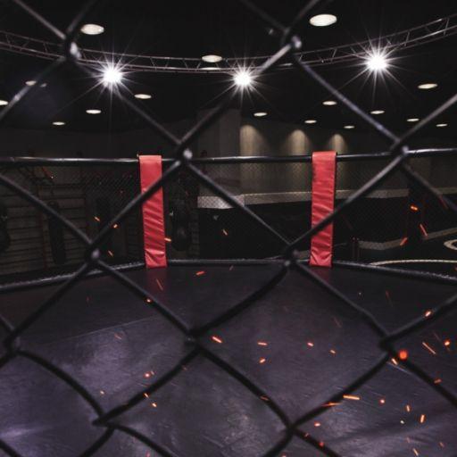 Volkanovski verteidigt Titel im Federgewicht beim UFC 266 - Blaydes siegt (Foto)