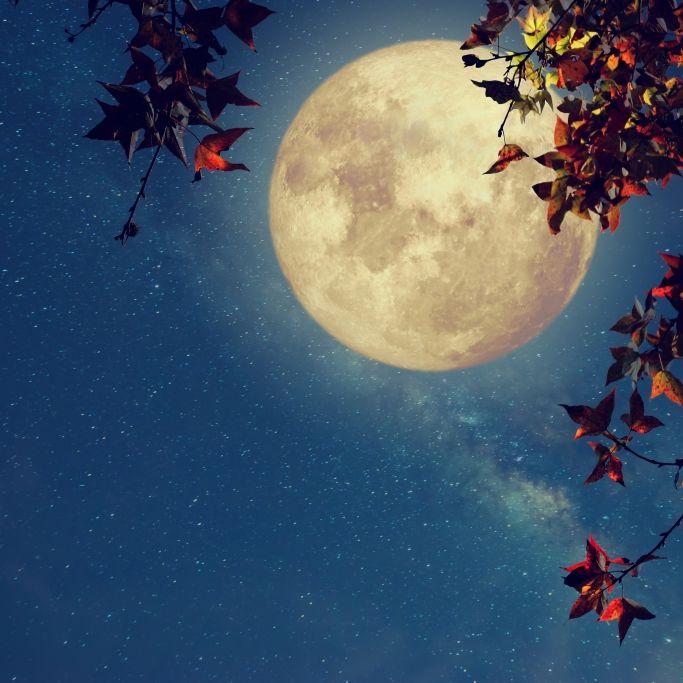 Prophezeit der Herbstmond stürmisches Wetter? (Foto)